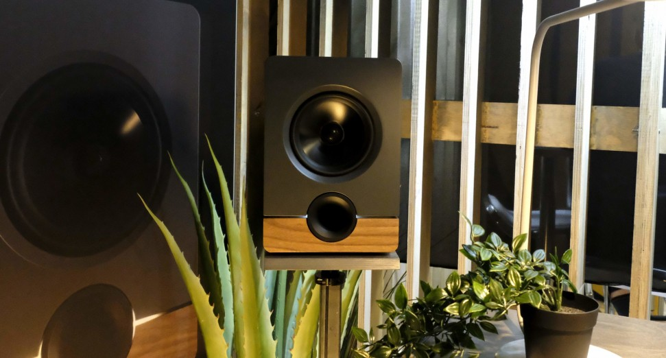 Output Speakers